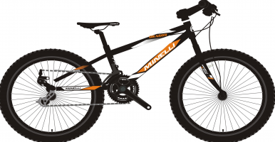 vélo pour enfant Minelli - Dragon - 2021 kid's bike